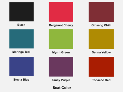 Chair In Multicolour With Arms Seat Color