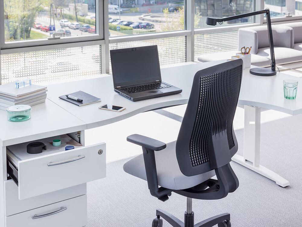 Sal Ergonomic Desk