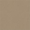 Xtreme Light Brown