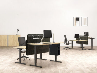 Axel Standalone Electric Height Adjustable Desk