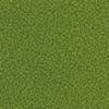 Prairie Green