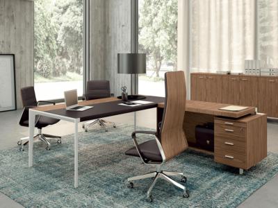 Buono 2 Sleek Executive Desk In Wood Veneer With Leather Inlay1