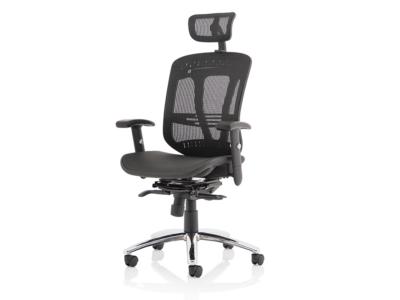 Rennie Black Mesh Executive Chair With Headrest2
