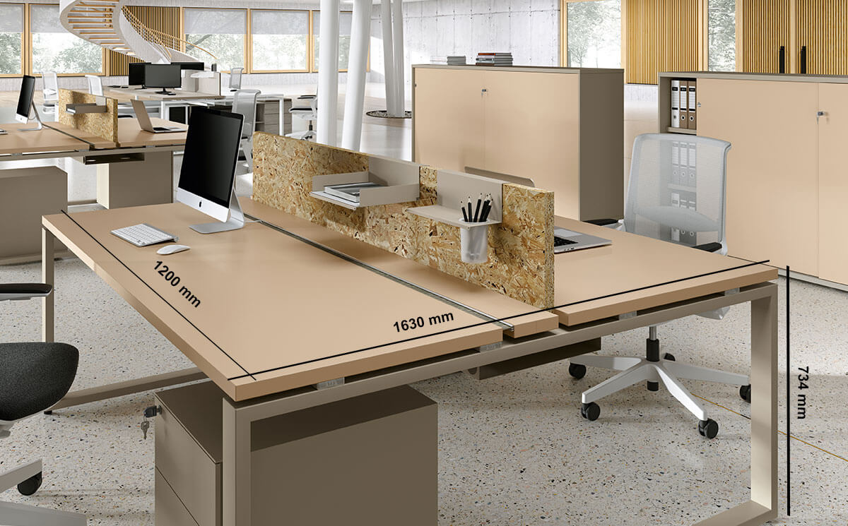 Carita 4 Ring Legs Back To Back Workstation With Screen Desk Size
